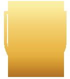 zorgbeveiliging icoon